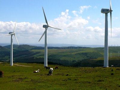 Spanje is de wereldleider in windenergie vanwege de penetratie in de elektriciteitsmarkt, 's werelds tweede, die in 2013 was 21,1%, waardoor de technologie meer levert dan dat de vraag is, zelfs meer dan kernenergie.