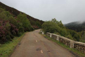 De provinciale weg LE333 op een hoogte van de boomgrens.