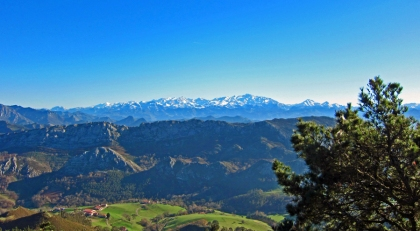 Op de achtergrond de besneeuwde Picos de Europa.