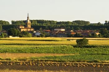 Villarejo de Órbigo, typisch landelijk panorama
