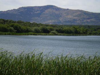 Uitzicht op de Monte Abantos, uitgehouwd in de Paraje Pintoresco del Pinar de Abantos en de Zona de la Herrería, vanaf het stuwmeer van Los Arroyos