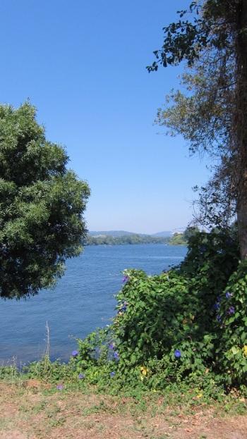 El rio Miño 4