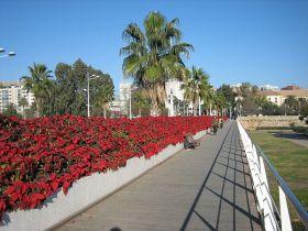 800px-Puente_de_las_flores
