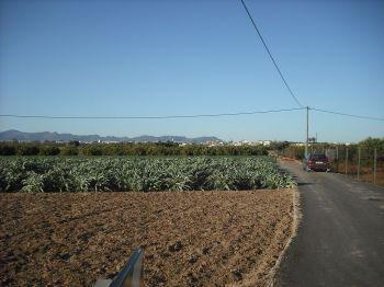 Landerijen (Huerta) rond het dorp Borbotó.