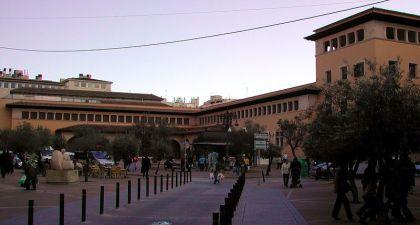 De mercado del Olivar is de belangrijkste markt voor levensmiddelen in Palma.