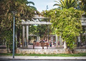 Afbeelding van een plein met veel groen.
