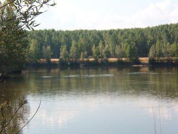 De rivier de Esla halverwege zijn stroomgebied.