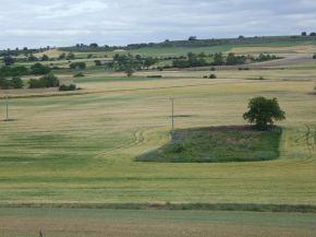 Landschapsfoto met veel akkers.